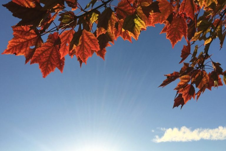 Ten Things To Love About September